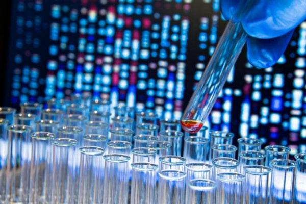 My Own Path to Optimum Wellness – Genomic Test Results