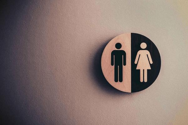 Male & Female Hormones